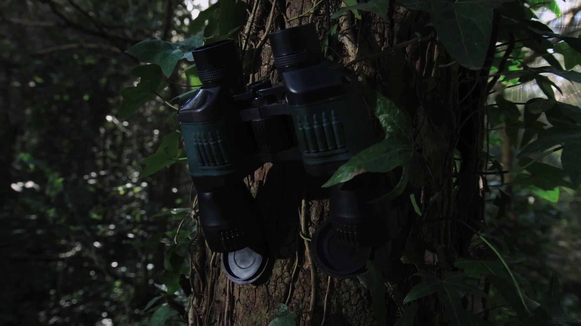 Teaser Binoculares – Jungle Nest