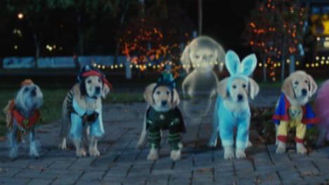 Ajuda - Spooky Buddies: Cachorros assombrados