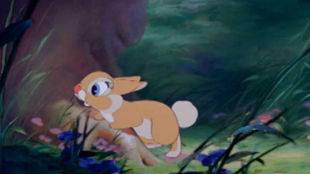 Primeira vista - Bambi